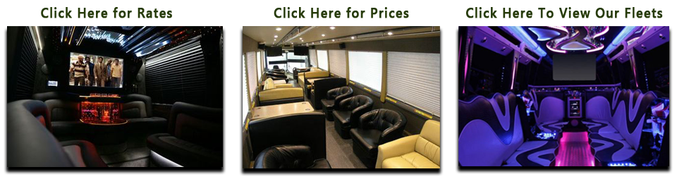 Party Buses For Rent In Toledo Ohio How Much Is A Party
